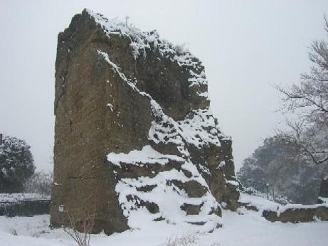 横須賀も雪