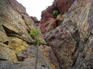 小樽の赤岩
