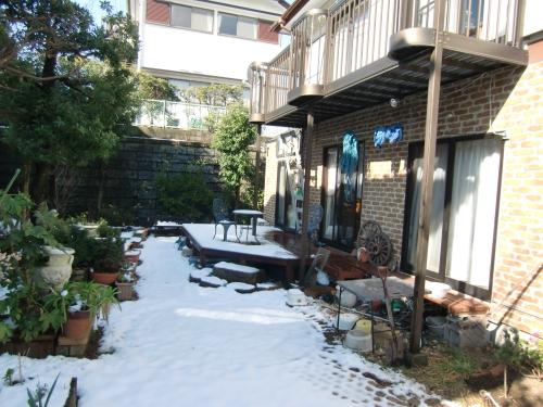 横須賀での初雪