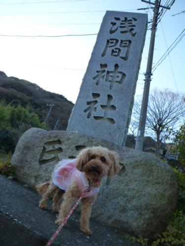 リハビリ登山 三浦富士